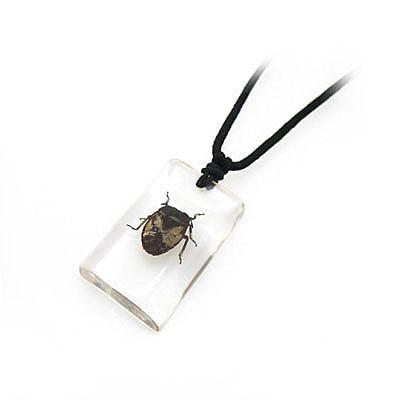 昆虫透明琥珀项链 饰品批发 银饰批发 韩饰批发 藏饰批发 小饰品加盟